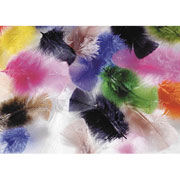 Turkey Feathers - Assorted Colors